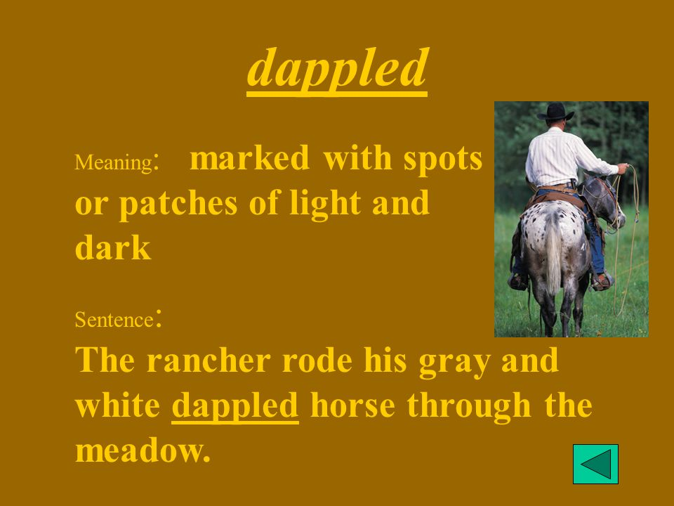 dappled Meaning: marked with spots or patches of light and dark