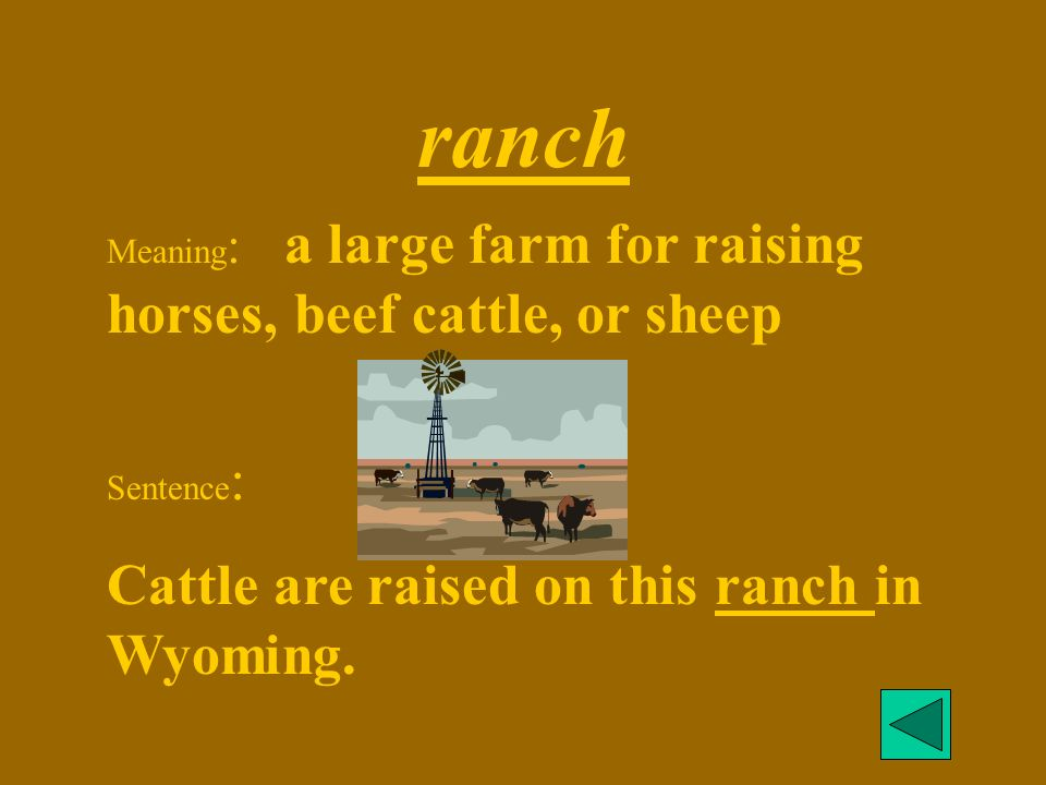 ranch Cattle are raised on this ranch in Wyoming.