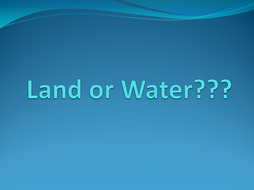 Land or Water