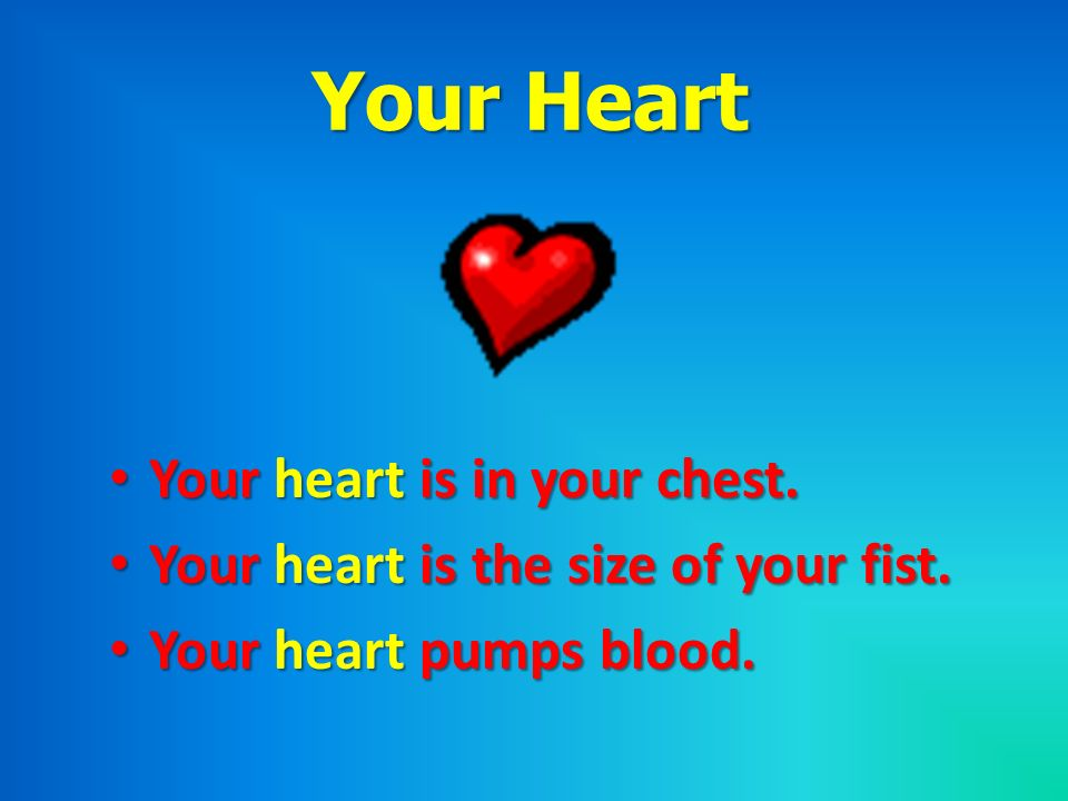 Your Heart Your heart is in your chest.