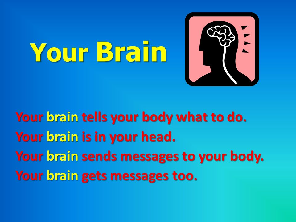 Your Brain Your brain tells your body what to do.