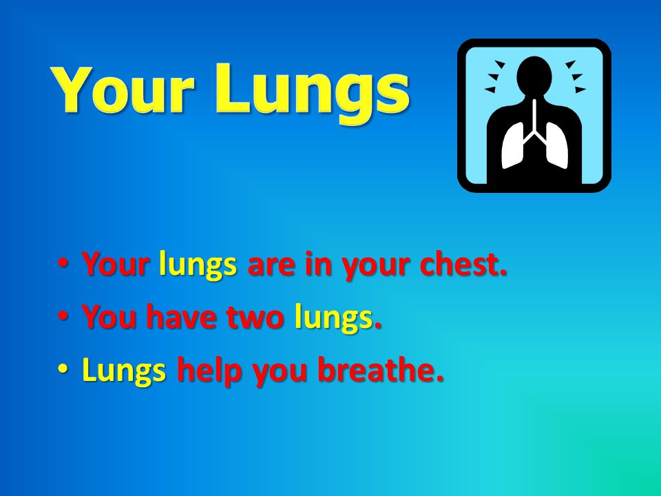 Your Lungs Your lungs are in your chest. You have two lungs.