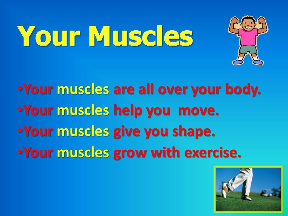 Your Muscles Your muscles are all over your body.