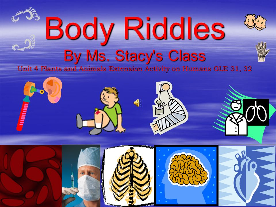 Body Riddles By Ms. Stacy s Class Unit 4 Plants and Animals Extension Activity on Humans GLE 31, 32