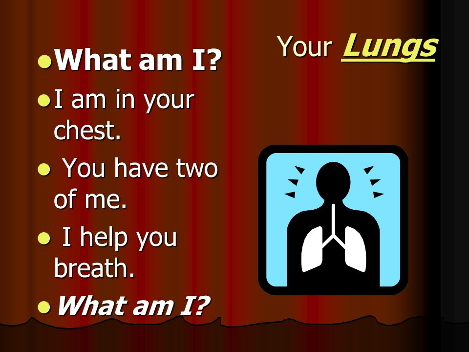 What am I Your Lungs I am in your chest. You have two of me.