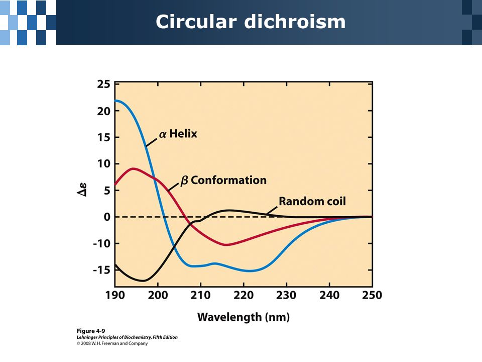 circular dichroism and secondary structure of proteins essay Protein secondary structure analyses from circular dichroism spectroscopy: methods and reference databases lee whitmore, b a wallace department of crystallography, birkbeck college, university of london, london wc1e 7hx, uk.