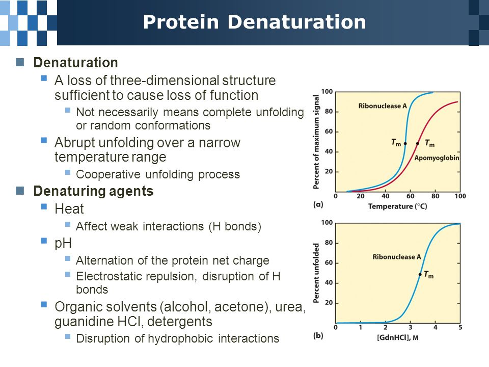 denaturation of proteins High pressure processing (hpp) is a relative new method for inactivating  microorganisms and extend the shelf life of food this technology has gained.