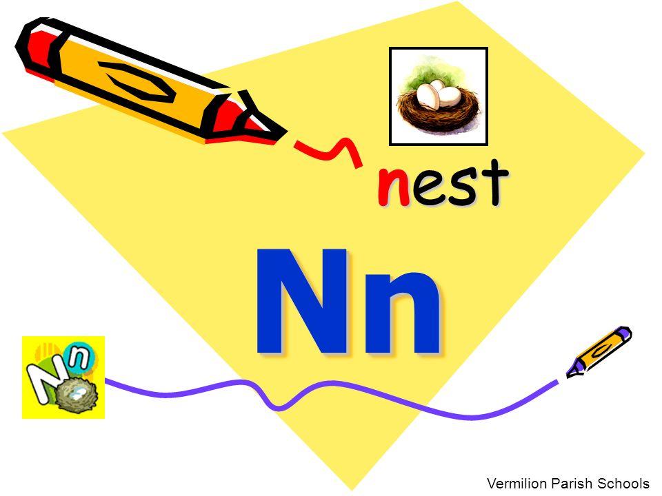 nest Nn Vermilion Parish Schools