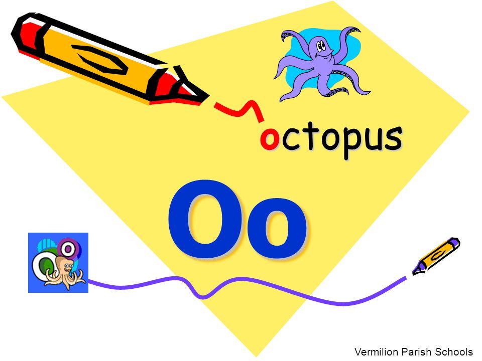 octopus Oo Vermilion Parish Schools