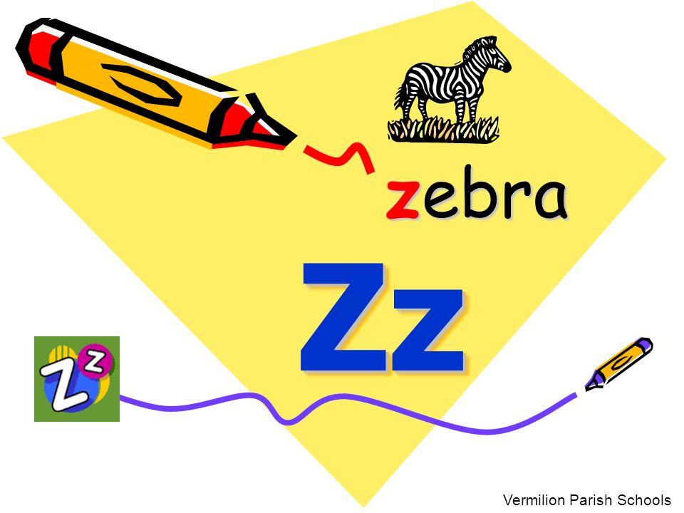 zebra Zz Vermilion Parish Schools