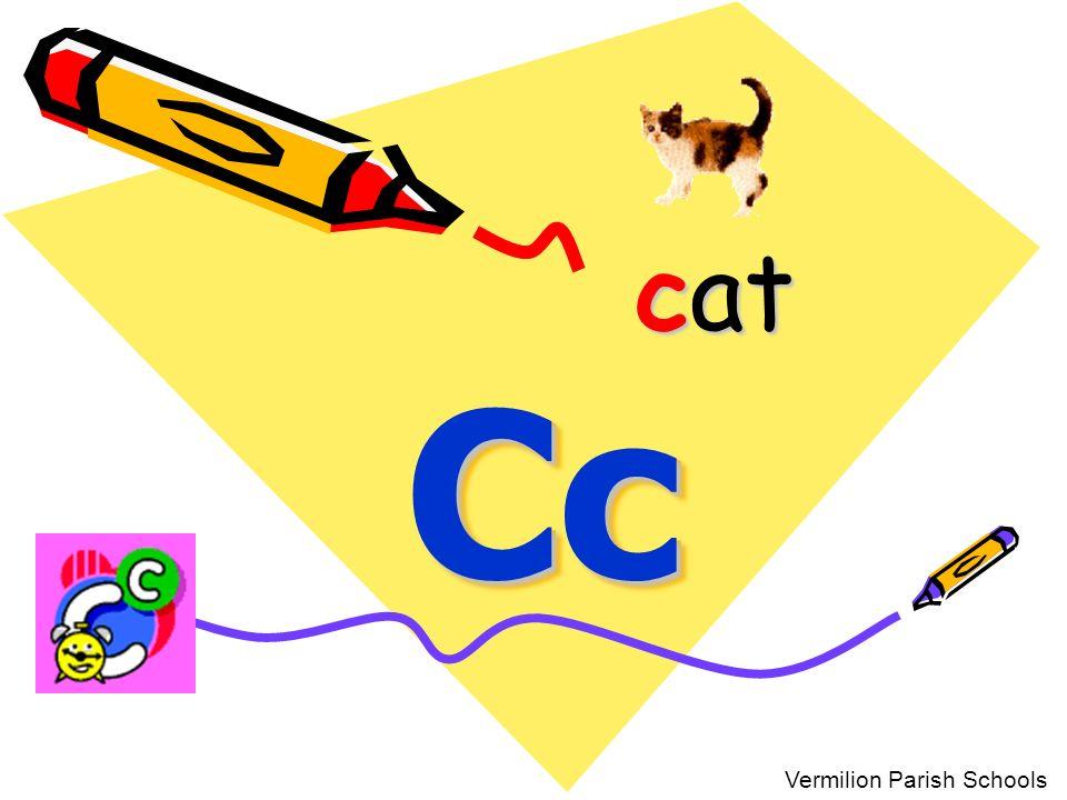 cat Cc Vermilion Parish Schools