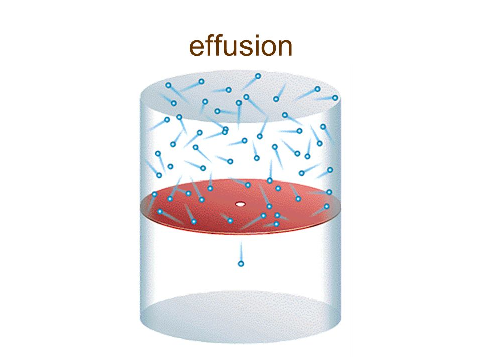 relationship between effusion rate and molar mass