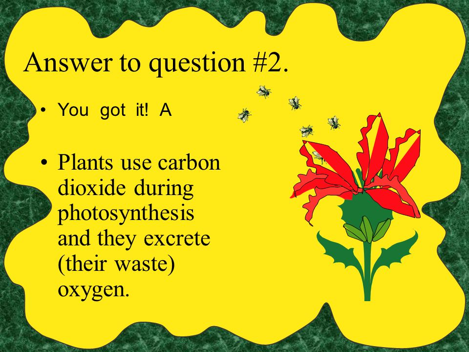 Answer to question #2. You got it. A.