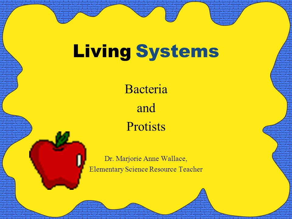 Living Systems Bacteria and Protists Dr. Marjorie Anne Wallace,