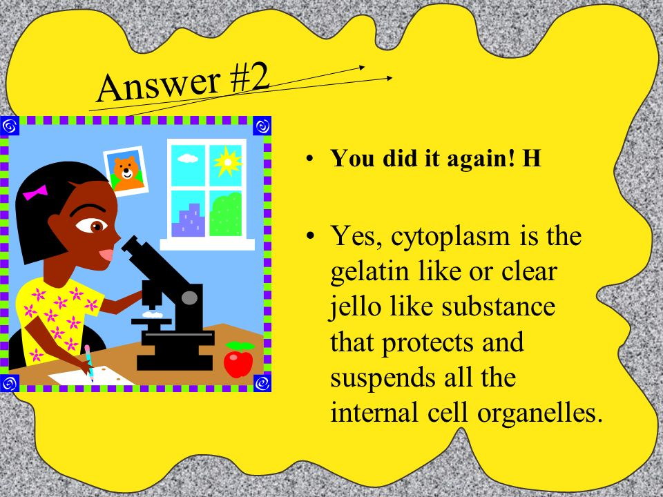 Answer #2 You did it again! H.