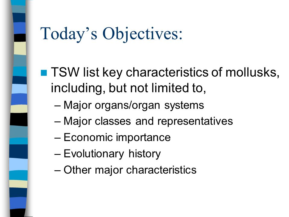 Today's Objectives: TSW list key characteristics of mollusks, including, but not limited to, Major organs/organ systems.