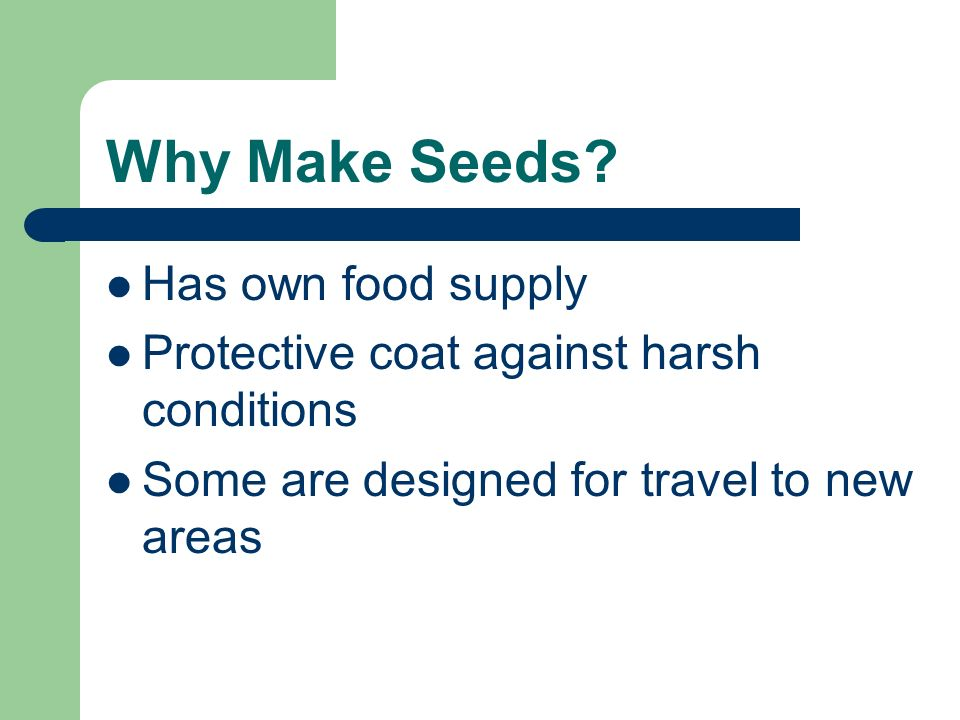 Why Make Seeds Has own food supply