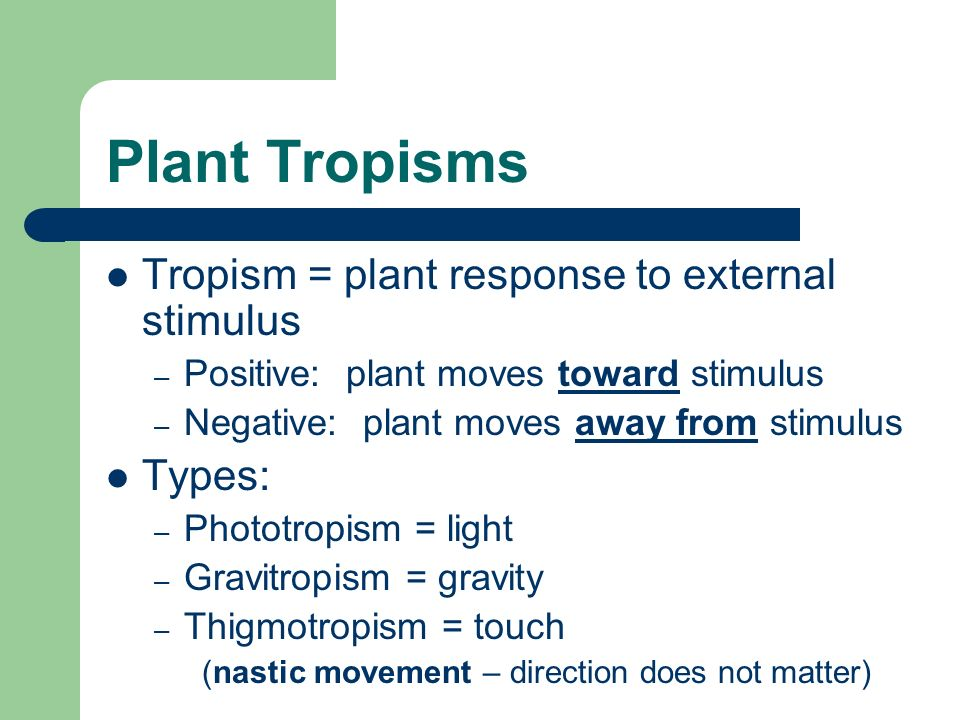 Plant Tropisms Tropism = plant response to external stimulus Types: