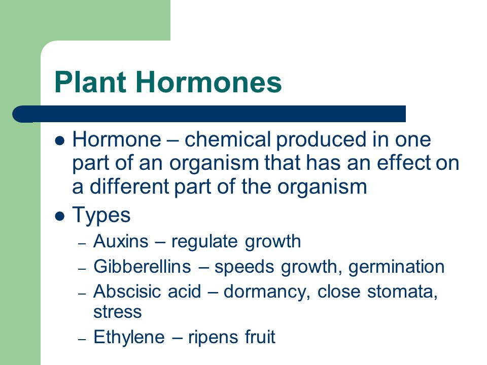 Plant Hormones Hormone – chemical produced in one part of an organism that has an effect on a different part of the organism.