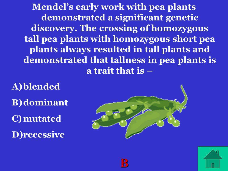 Mendel's early work with pea plants demonstrated a significant genetic discovery. The crossing of homozygous tall pea plants with homozygous short pea plants always resulted in tall plants and demonstrated that tallness in pea plants is a trait that is –