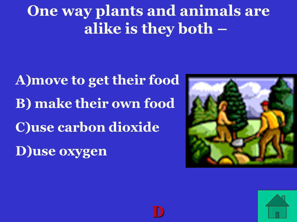 One way plants and animals are alike is they both –