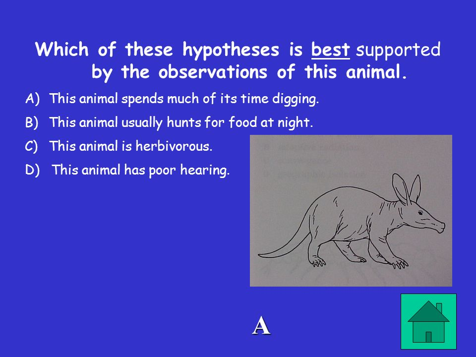 Which of these hypotheses is best supported by the observations of this animal.