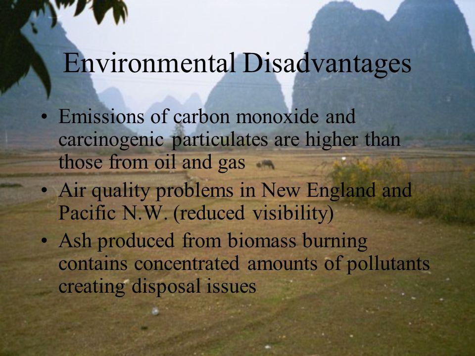 Environmental Disadvantages