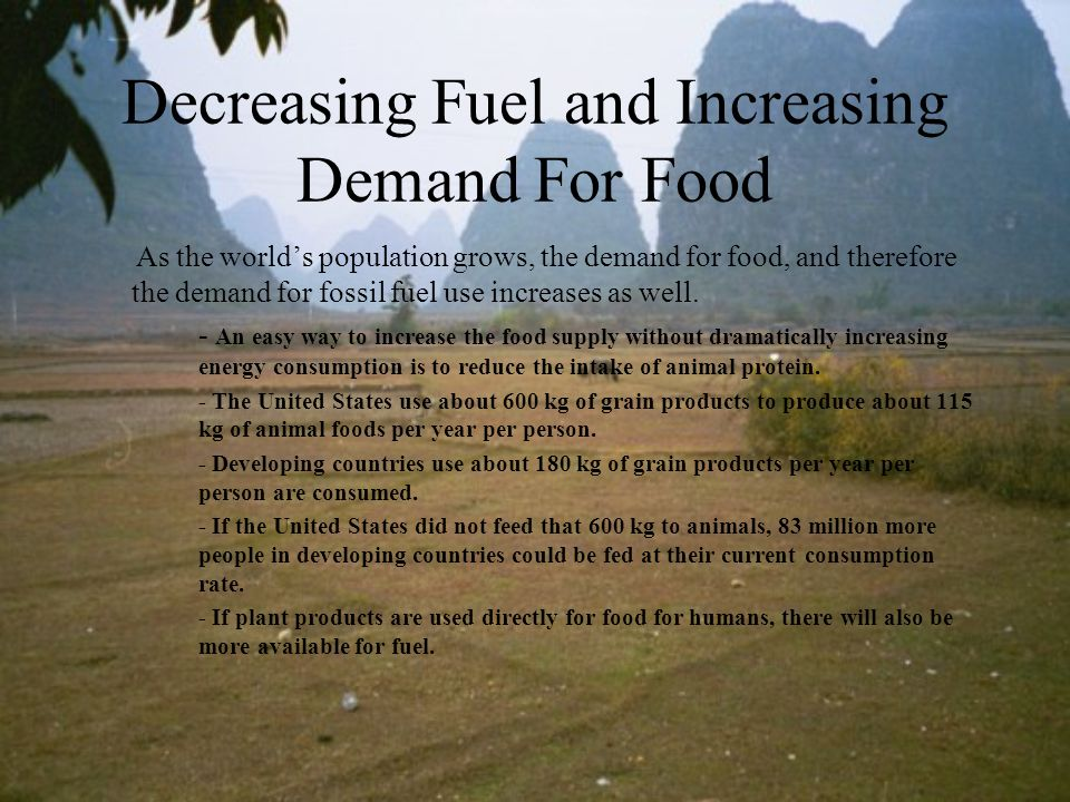 Decreasing Fuel and Increasing Demand For Food