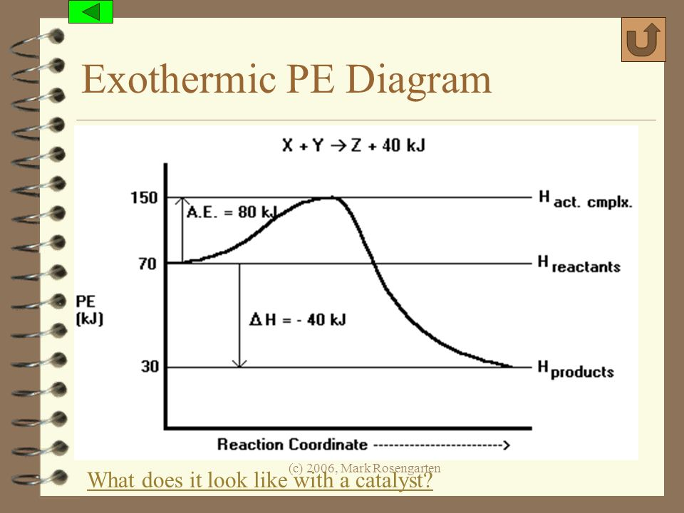 Exothermic PE Diagram What does it look like with a catalyst