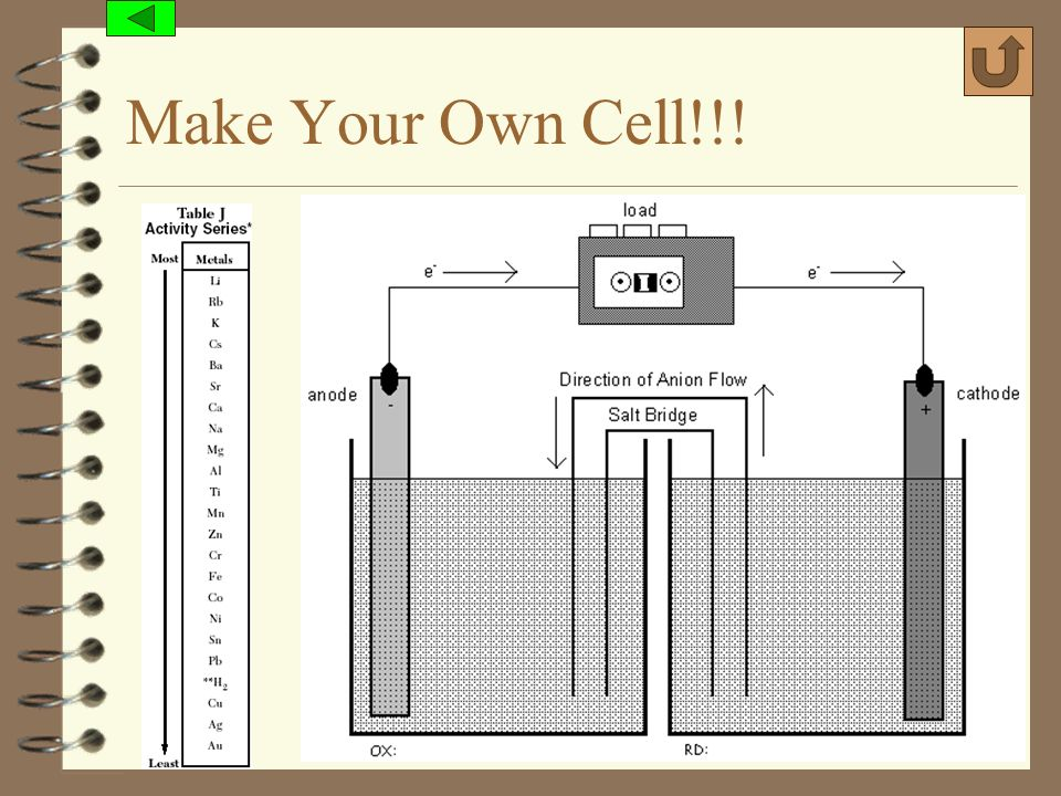 Make Your Own Cell!!! (c) 2006, Mark Rosengarten