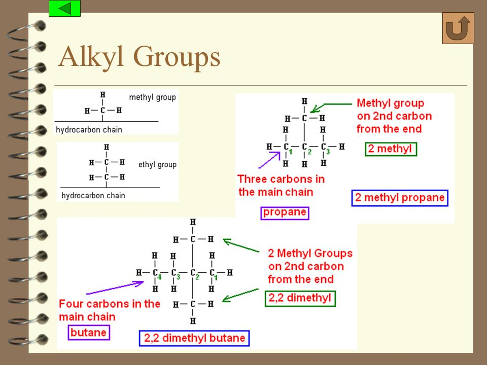 Alkyl Groups (c) 2006, Mark Rosengarten