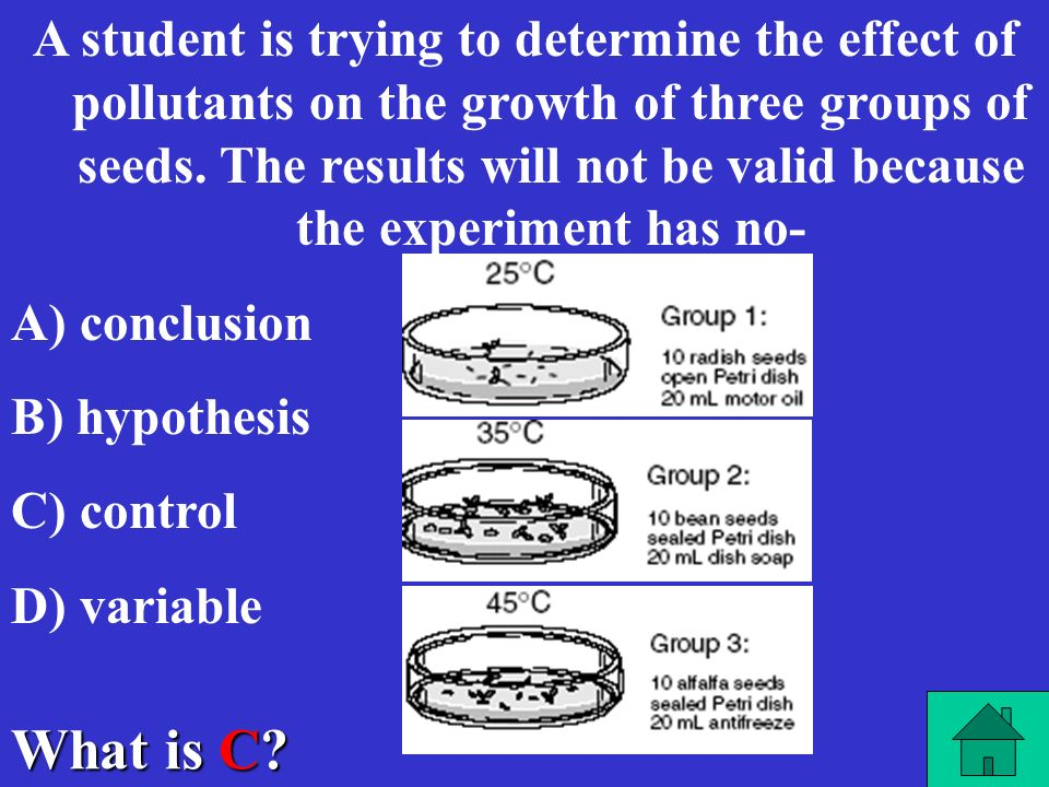 A student is trying to determine the effect of pollutants on the growth of three groups of seeds. The results will not be valid because the experiment has no-