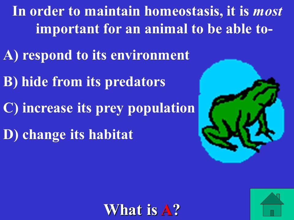 In order to maintain homeostasis, it is most important for an animal to be able to-