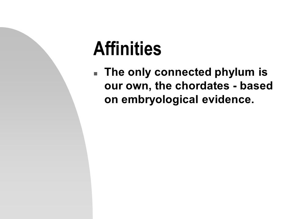 Affinities The only connected phylum is our own, the chordates - based on embryological evidence.