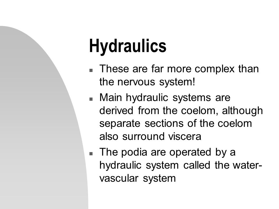 Hydraulics These are far more complex than the nervous system!