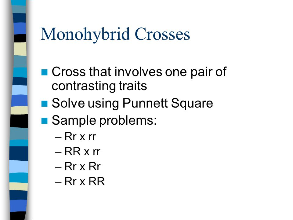 Monohybrid Crosses Cross that involves one pair of contrasting traits