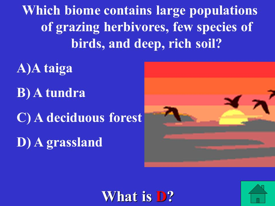 Which biome contains large populations of grazing herbivores, few species of birds, and deep, rich soil