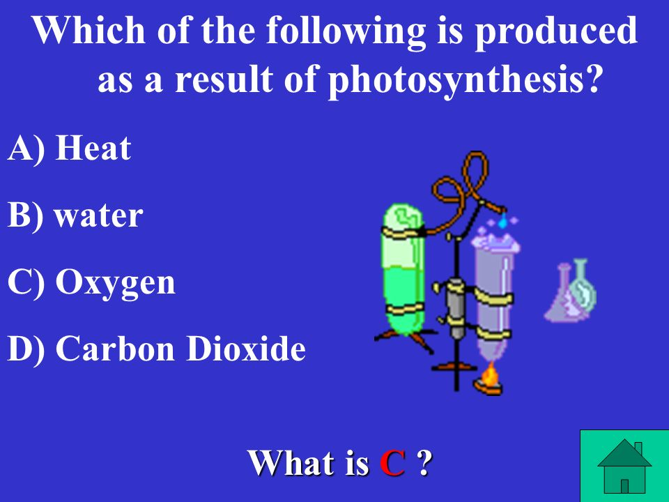 Which of the following is produced as a result of photosynthesis