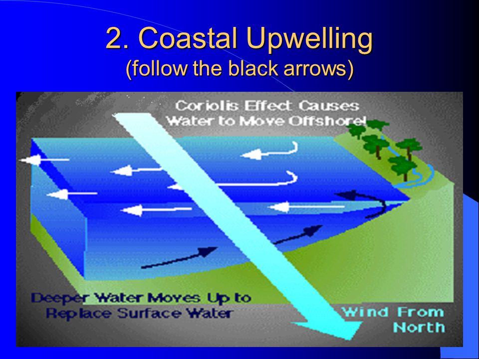 2. Coastal Upwelling (follow the black arrows)