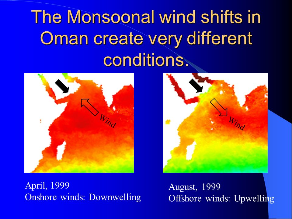 The Monsoonal wind shifts in Oman create very different conditions.