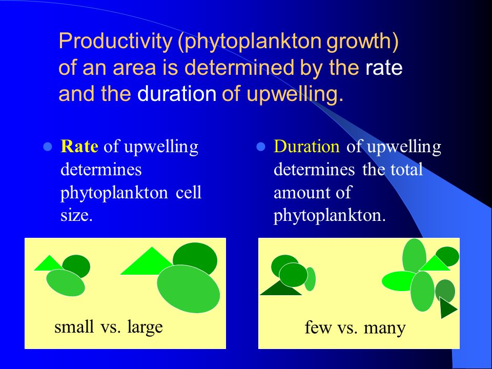 Productivity (phytoplankton growth) of an area is determined by the rate and the duration of upwelling.