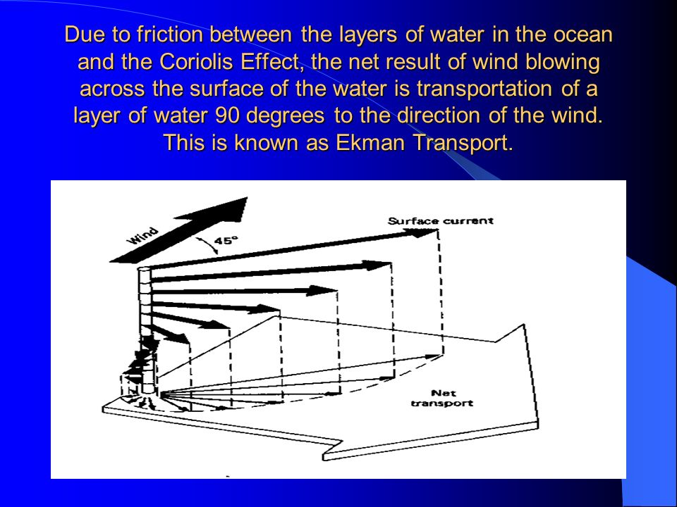Due to friction between the layers of water in the ocean and the Coriolis Effect, the net result of wind blowing across the surface of the water is transportation of a layer of water 90 degrees to the direction of the wind.