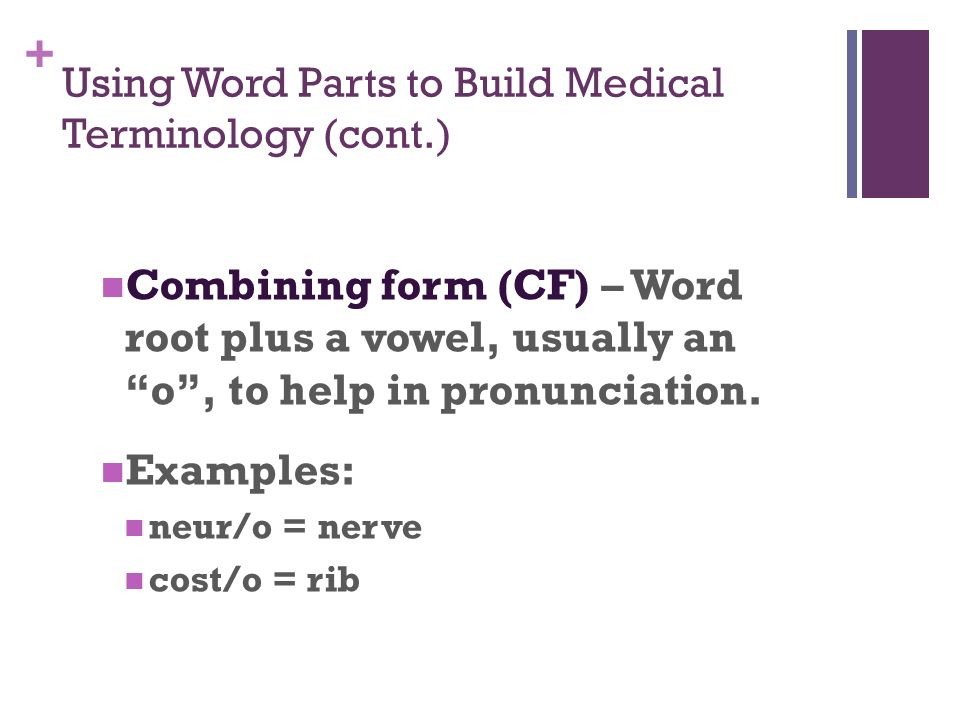Medical Terminology Foundations Baccus. - ppt video online download