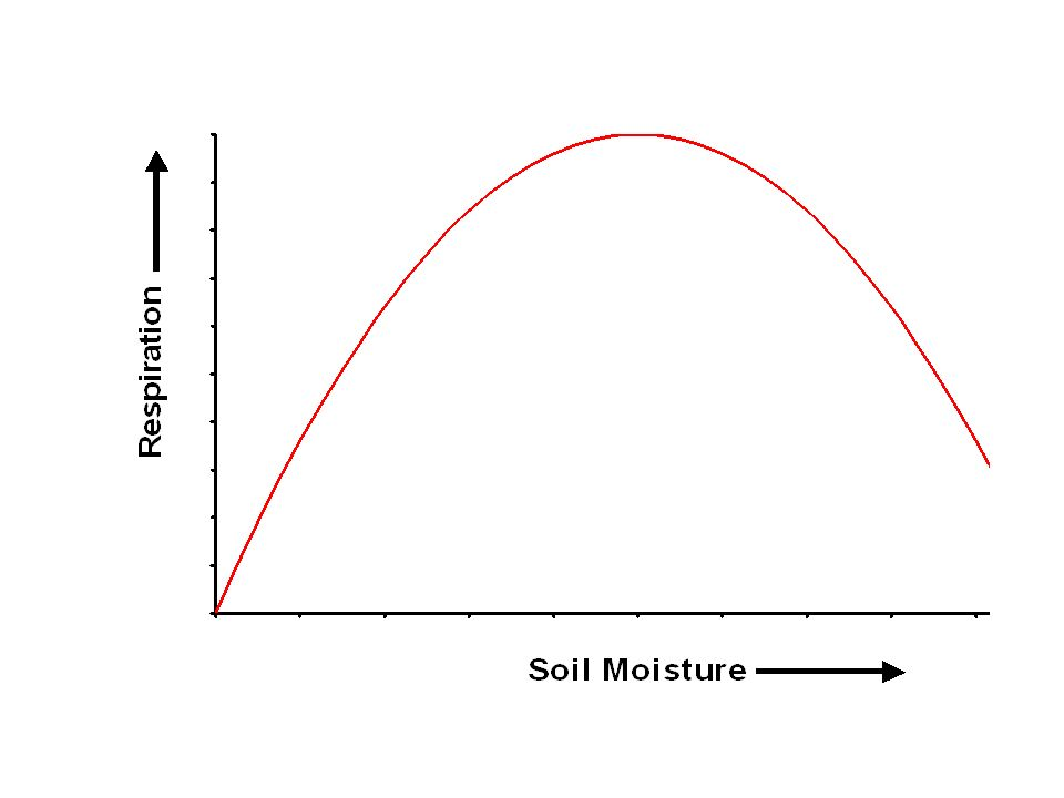 Moisture is limiting up to a certain point, at higher soil moistures, decomposition can actually drop