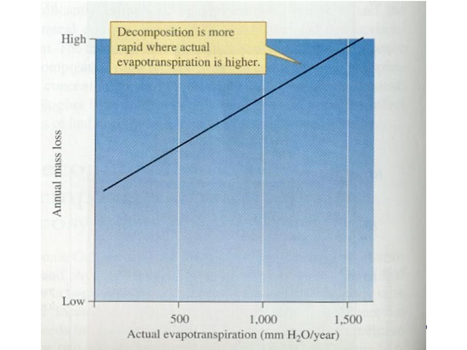 One way to combine the effects of temperature and moisture on total decomposition is to look at rates of actual evapotranspiration