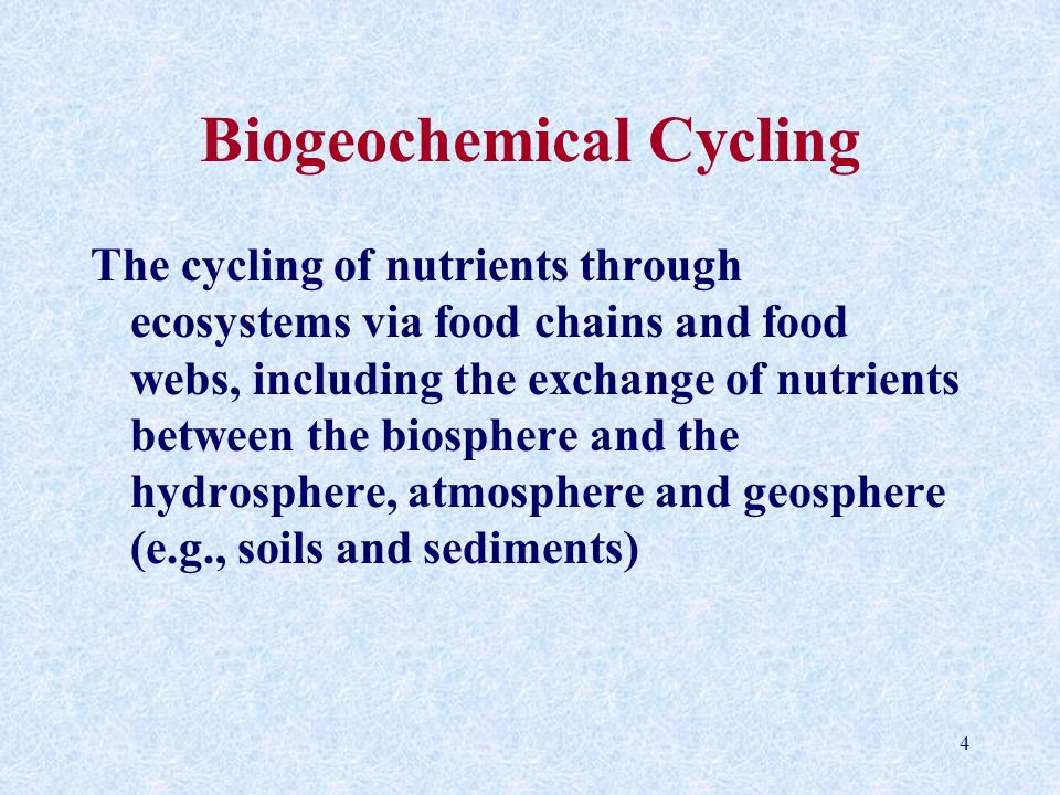 Biogeochemical Cycling