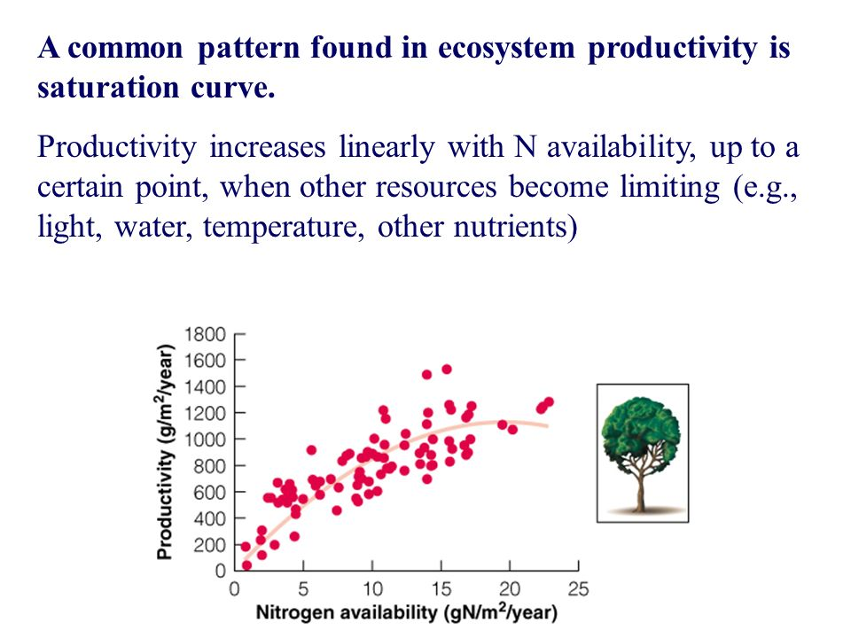 A common pattern found in ecosystem productivity is saturation curve.