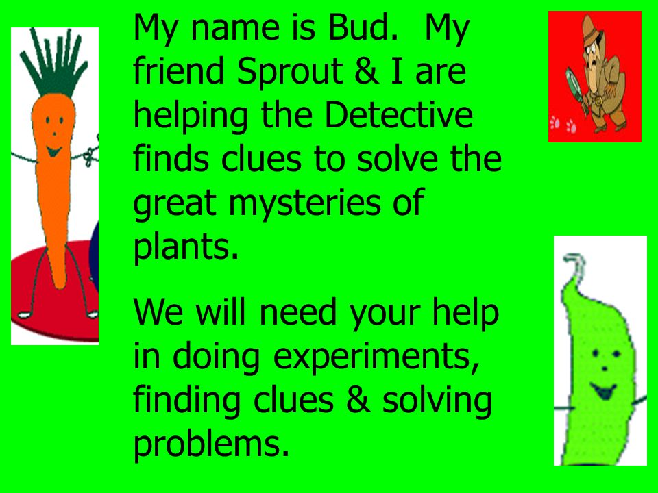 My name is Bud. My friend Sprout & I are helping the Detective finds clues to solve the great mysteries of plants.