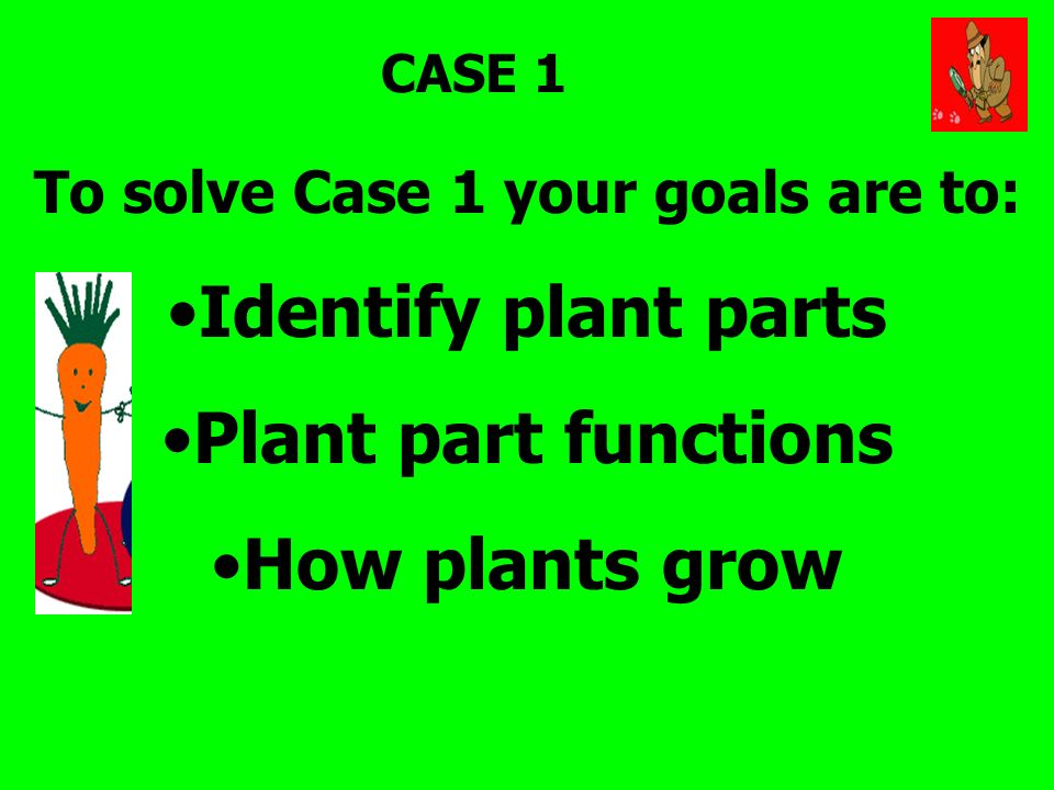 To solve Case 1 your goals are to: