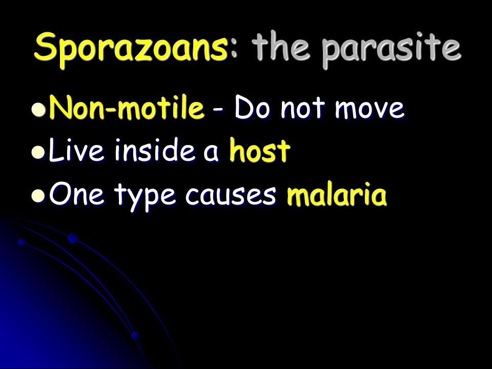 Sporazoans: the parasite